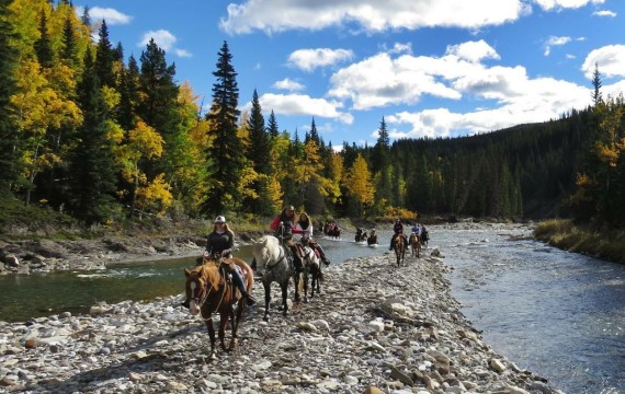 Calling adventuresome Yoginis and Cowgirls: You are invited to a weekend of wellness, yoga, trail riding, friendships, stillness, and fun.  September 15-18 2017.